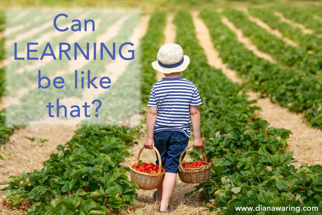 Can Learning be Like That?
