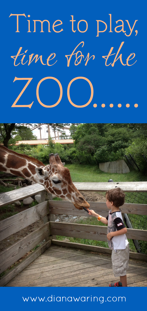 Time for play, time for the zoo